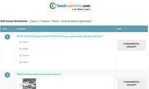 Teach Learn Web Worksheet